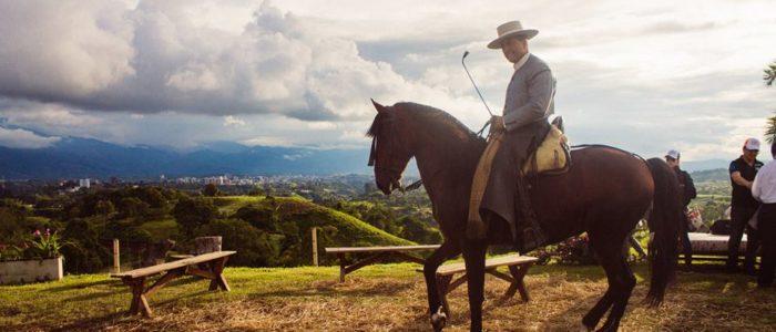 Show caballos españoles